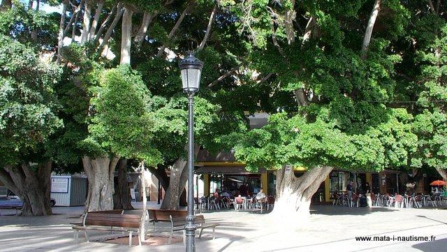 Terrasse à San Sebastian de la Gomera