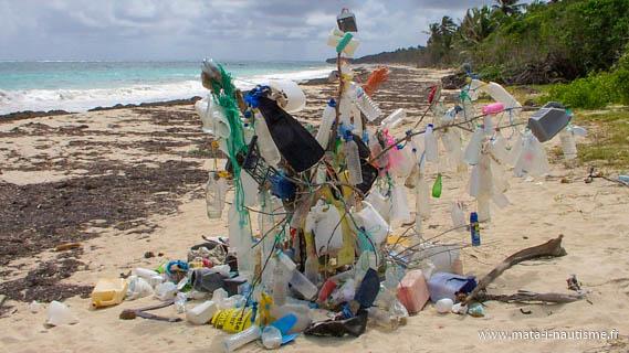 L'arbre à dechet - Martinique