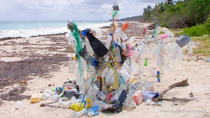 L'arbre à plastique