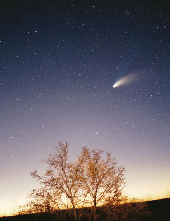 La comète Hale-Bopp
